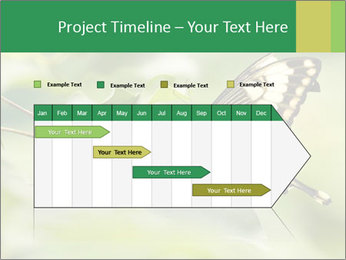 0000083874 PowerPoint Templates - Slide 25