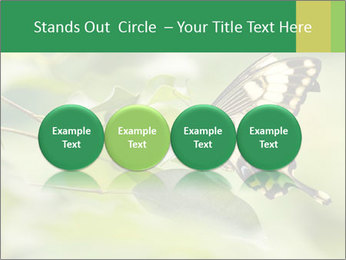 0000083874 PowerPoint Templates - Slide 76