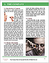 0000083881 Word Template - Page 3
