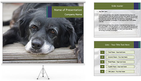0000083882 PowerPoint Template
