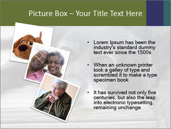 0000083882 PowerPoint Templates - Slide 17