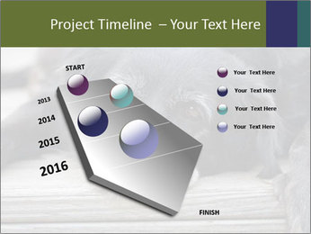 0000083882 PowerPoint Templates - Slide 26