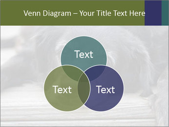 0000083882 PowerPoint Templates - Slide 33