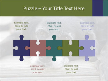 0000083882 PowerPoint Templates - Slide 41