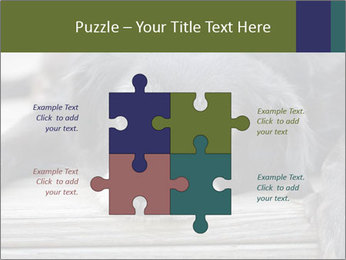 0000083882 PowerPoint Templates - Slide 43
