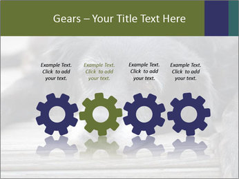 0000083882 PowerPoint Templates - Slide 48