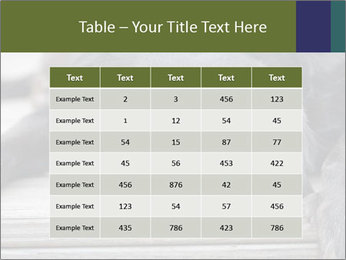 0000083882 PowerPoint Templates - Slide 55
