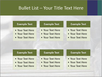 0000083882 PowerPoint Templates - Slide 56
