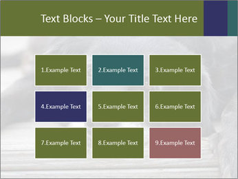 0000083882 PowerPoint Templates - Slide 68