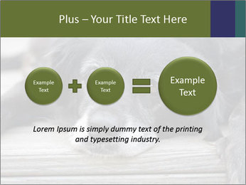 0000083882 PowerPoint Templates - Slide 75