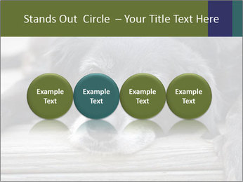 0000083882 PowerPoint Templates - Slide 76