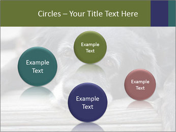 0000083882 PowerPoint Templates - Slide 77