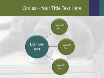 0000083882 PowerPoint Templates - Slide 79