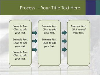 0000083882 PowerPoint Templates - Slide 86