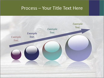 0000083882 PowerPoint Templates - Slide 87