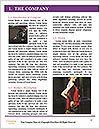 0000083885 Word Template - Page 3