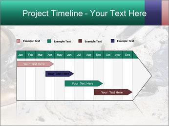 0000083893 PowerPoint Templates - Slide 25