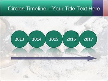 0000083893 PowerPoint Templates - Slide 29