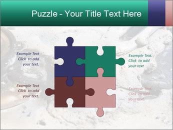 0000083893 PowerPoint Templates - Slide 43