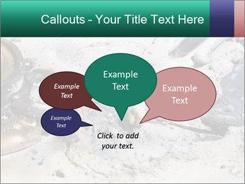 0000083893 PowerPoint Templates - Slide 73