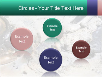 0000083893 PowerPoint Templates - Slide 77