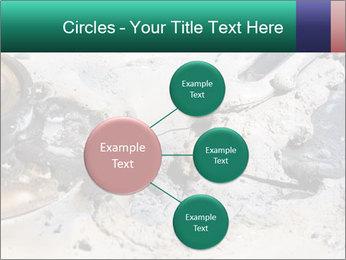 0000083893 PowerPoint Templates - Slide 79