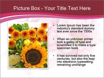 0000083898 PowerPoint Template - Slide 13