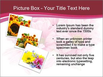 0000083898 PowerPoint Templates - Slide 17