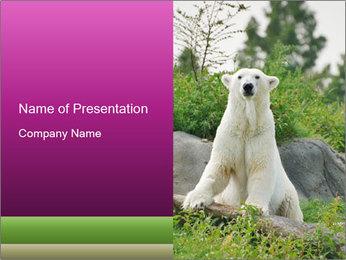 0000083902 PowerPoint Template - Slide 1