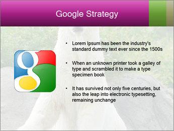 0000083902 PowerPoint Template - Slide 10