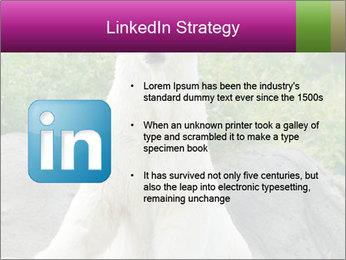 0000083902 PowerPoint Template - Slide 12