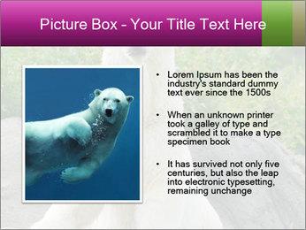0000083902 PowerPoint Template - Slide 13