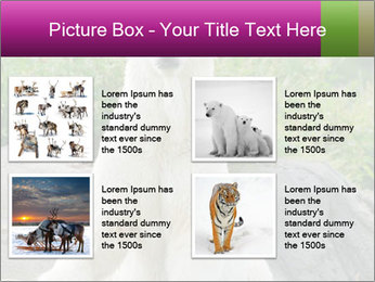 0000083902 PowerPoint Templates - Slide 14