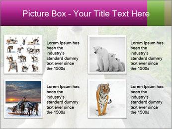 0000083902 PowerPoint Template - Slide 14