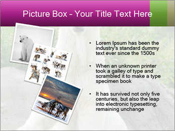 0000083902 PowerPoint Templates - Slide 17