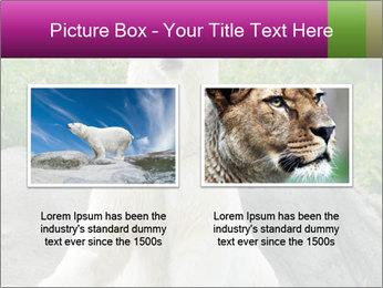 0000083902 PowerPoint Template - Slide 18
