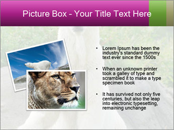 0000083902 PowerPoint Templates - Slide 20