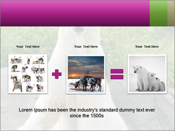 0000083902 PowerPoint Template - Slide 22