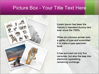0000083902 PowerPoint Templates - Slide 23