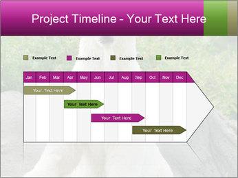 0000083902 PowerPoint Template - Slide 25