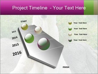 0000083902 PowerPoint Template - Slide 26