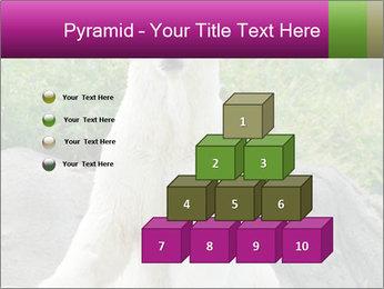 0000083902 PowerPoint Template - Slide 31