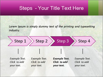0000083902 PowerPoint Template - Slide 4