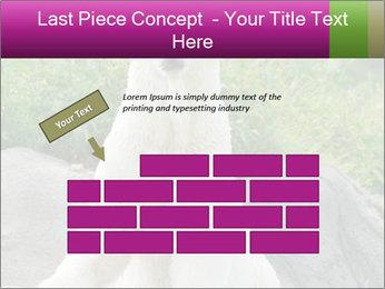 0000083902 PowerPoint Template - Slide 46