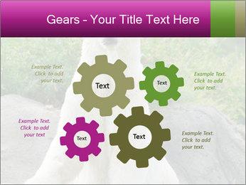 0000083902 PowerPoint Template - Slide 47