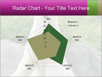 0000083902 PowerPoint Template - Slide 51