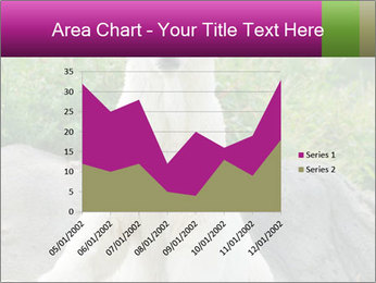 0000083902 PowerPoint Template - Slide 53