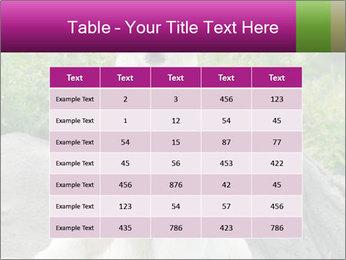 0000083902 PowerPoint Template - Slide 55
