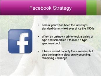 0000083902 PowerPoint Template - Slide 6