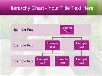 0000083902 PowerPoint Template - Slide 67